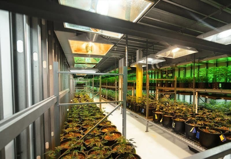 Interior of a prefab steel agricultural cannabis grow-ops facility with multiple levels